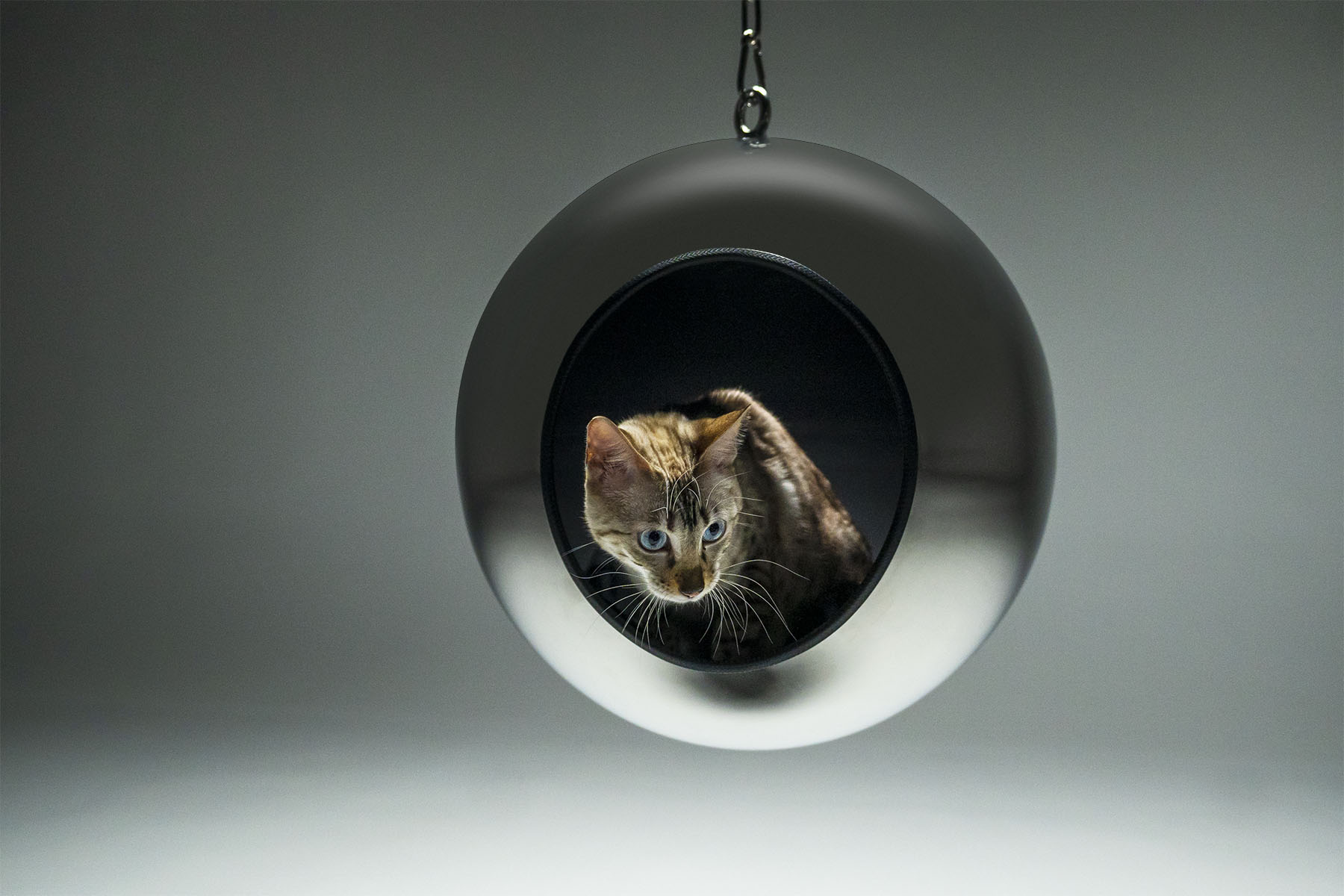 Piranjas Pluto Cat Bed (Variant 18)