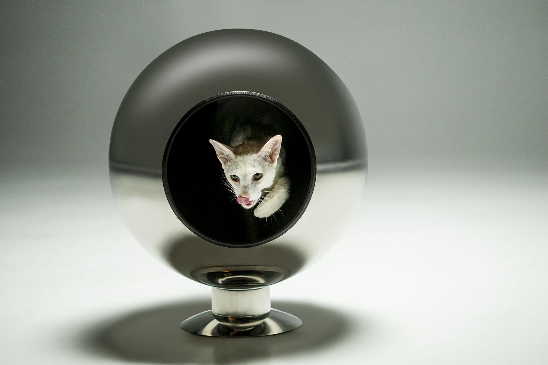 Piranjas Pluto Cat Bed (Variant 4)